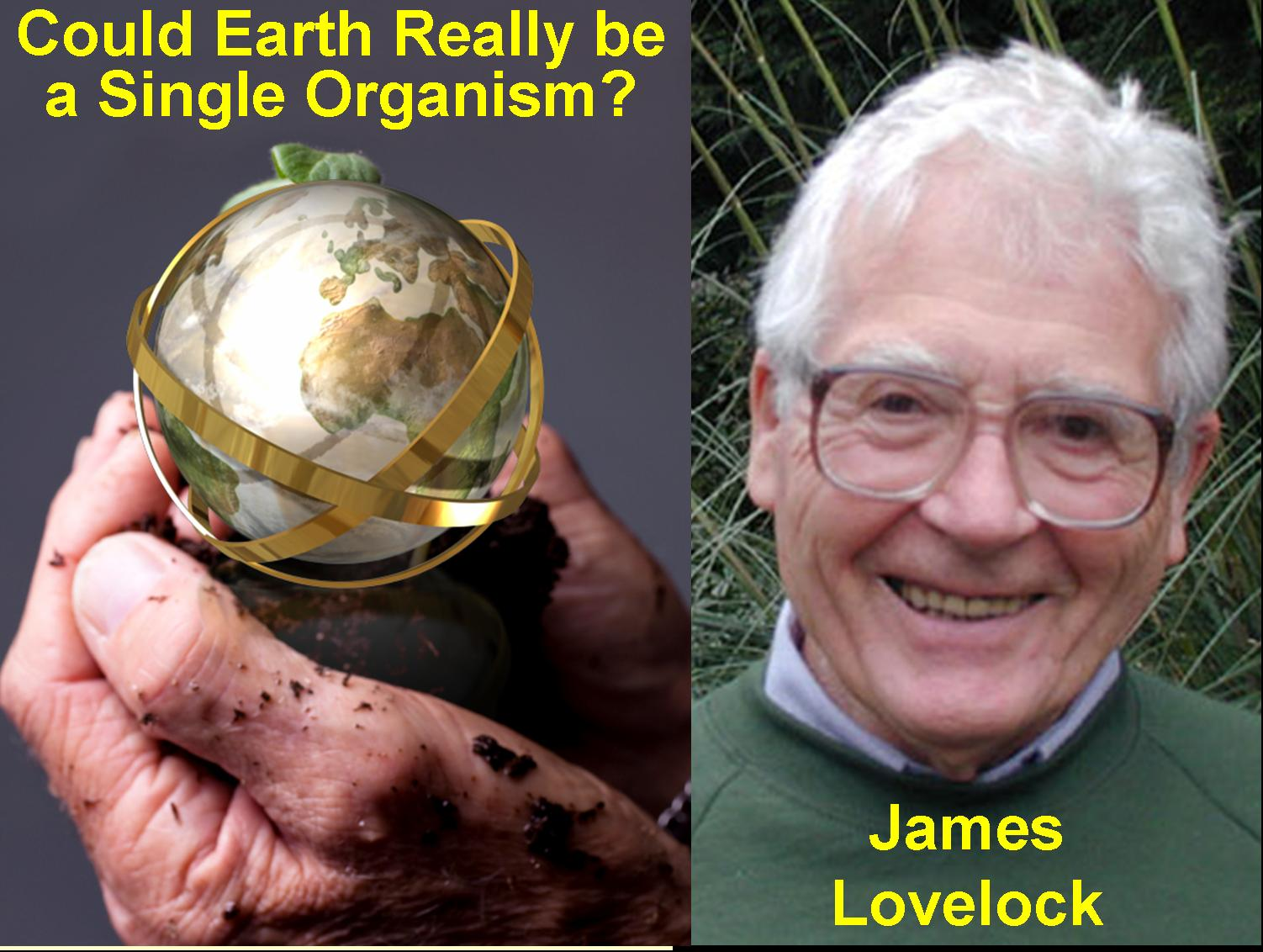 """gaia hypothesis The gaia hypothesis is named after the greek goddess for the earth according to  gaia hypothesis, earth itself is a living organism, our """"mother."""