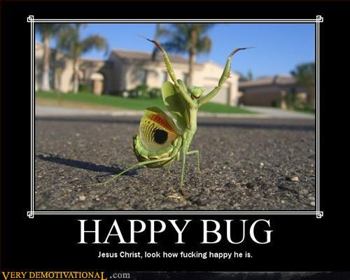 Happy Bug