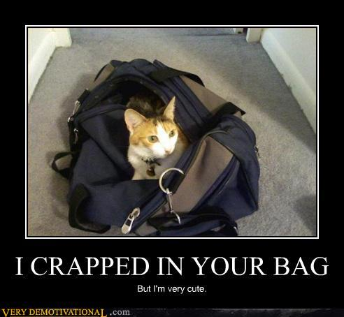 I Crapped in Your Bag