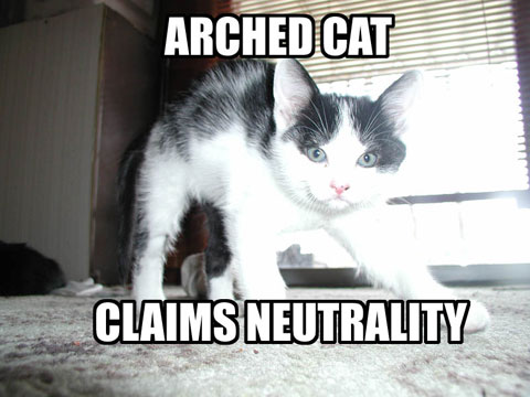 ARCHED CAT CLAIMS NEUTRALITY