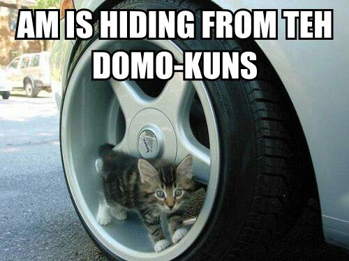 AM IS HIDING FROM TEH DOMO-KUNS