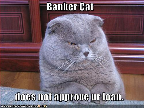 Banker Cat does not approve ur loan.
