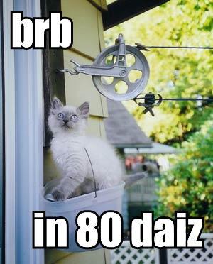 brb in 80 daiz