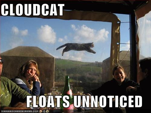 CLOUDCAT FLOATS UNNOTICED