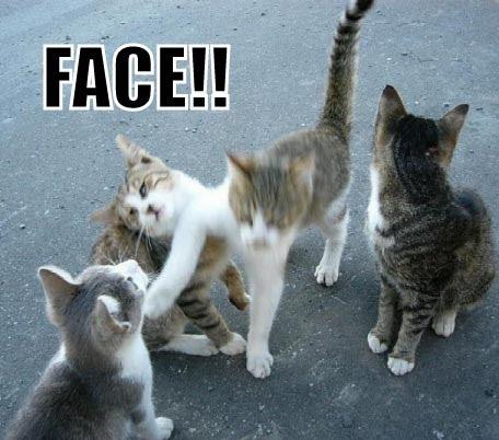 FACE!!
