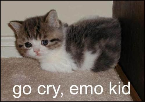 go cry, emo kid