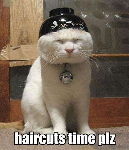 haircuts time plz