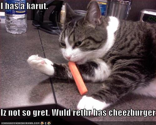 I has a karut.