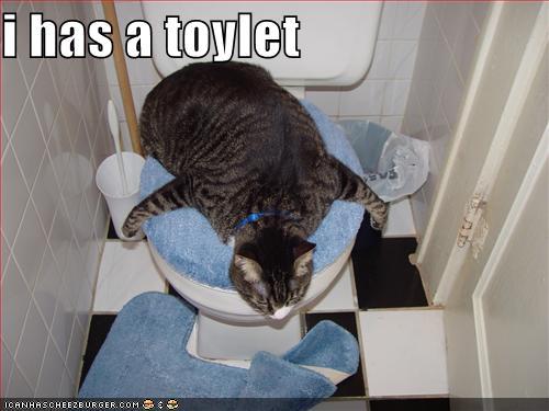 i has a toylet