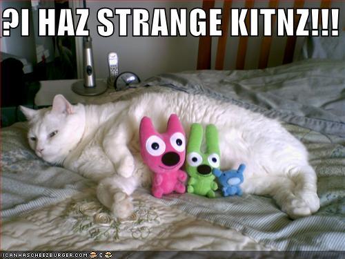 ?I HAZ STRANGE KITNZ!!!