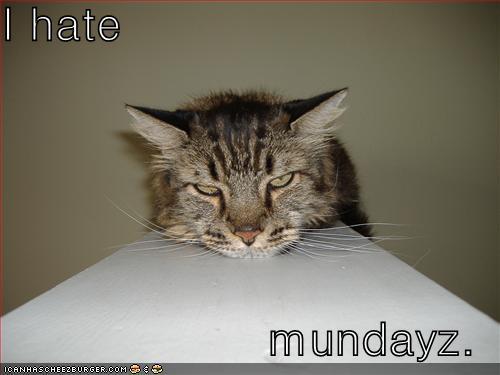 I hate mundayz.
