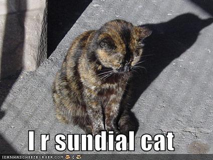 I r sundial cat