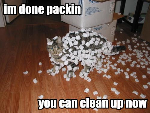 im done packin you can clean up now
