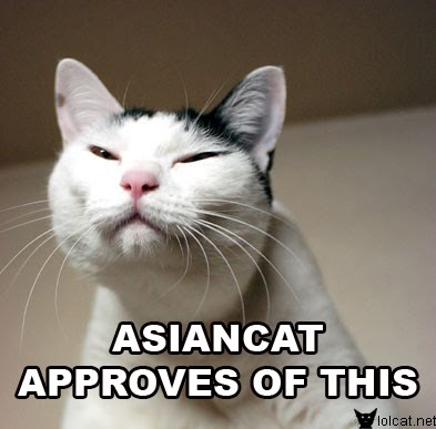 Asian Cat Approves of This