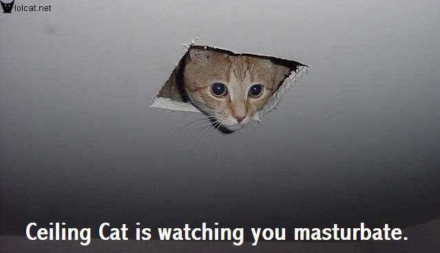 Ceiling Cat is Watching You Masturbat