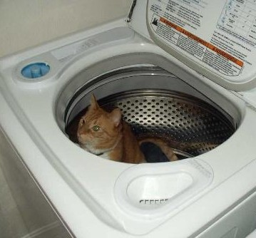 Hiding Inside the Washing Machine