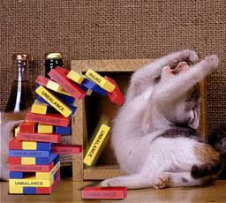 Cat Distraught Over Losing at Jenga