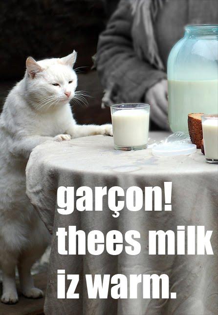Garcon! Thees milk iz warm