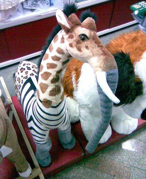 phoolish com leopard zebra elephant giraffe stuffed animal wtf pics