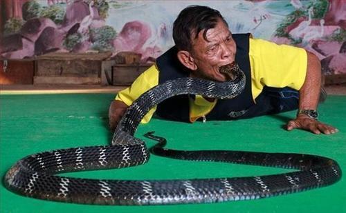 Man Eating a Live Snake