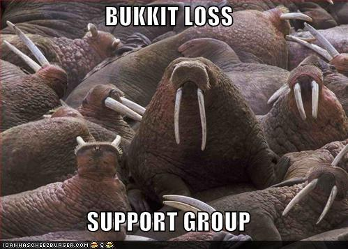 BUKKIT LOSS SUPPORT GROUP