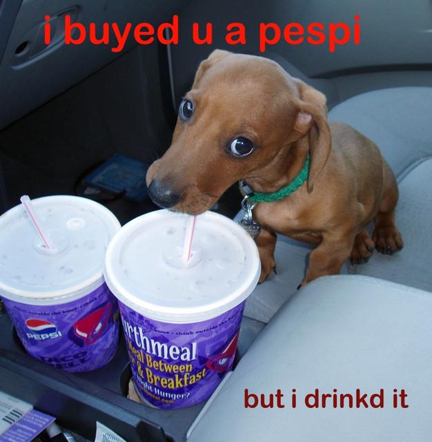 i buyed u a pespi but i drinkd it