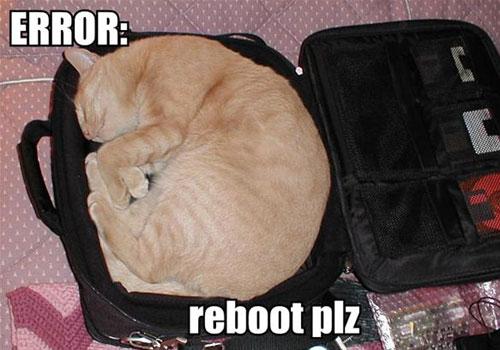 ERROR reboot plz