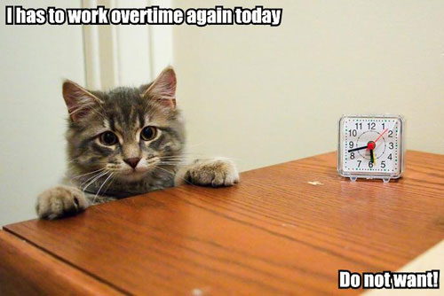 I has to work overtime again today Do not want!