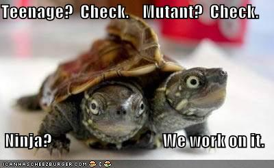 Teenage Check. Mutant Check. Ninja We work on it.