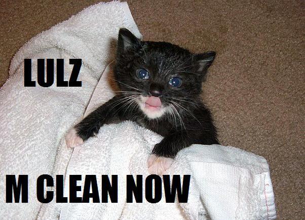 LULZ M CLEAN NOW