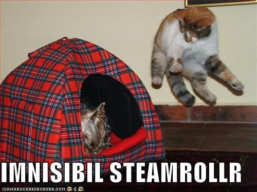 IMNISIBIL STEAMROLLR