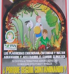 03-12-200- DIA MUNDIAL DEL NO USO DE PESTICIDAS