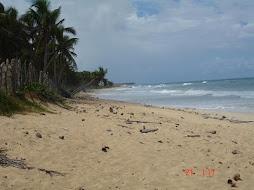 Terrenos en República Dominicana