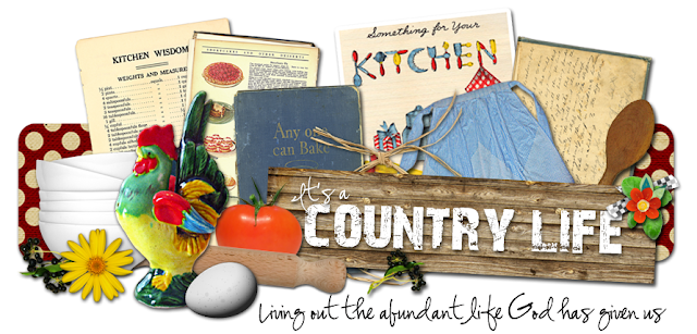 Its a Country Life Blog Design
