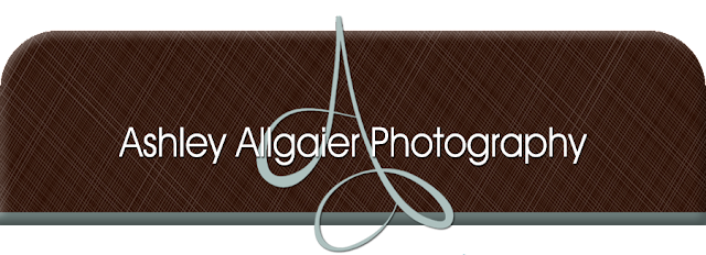 Ashley Allgaier Photography Blog Design
