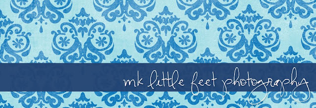 Little Feet Photography Blog Design