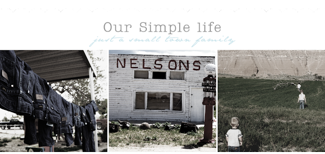 Our Simple Life Blog Design
