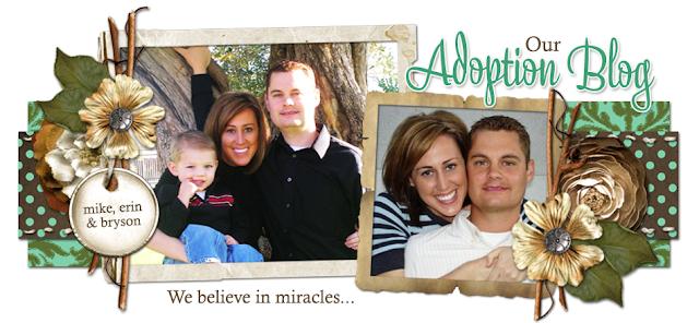 Mike and Erin Adoption Blog Design