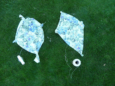 Homemade Kites