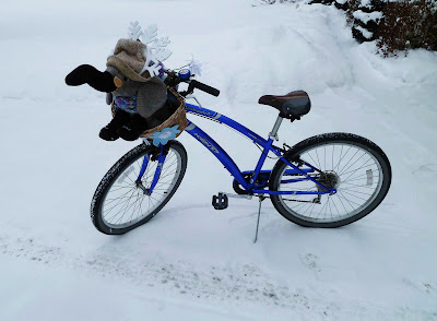 Elephant ready for mid-winter bike ride