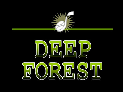Deep Forest new age zene, world zene, ethnic electric zene