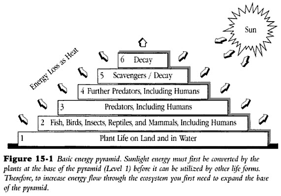 Science Energy Pyramid http://johnscorner.blogspot.com/2010/11/weird ...
