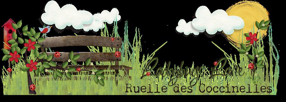 Ruelle des Coccinelles / Ladybugs Lane