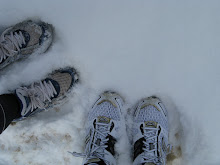 Snow Treads!