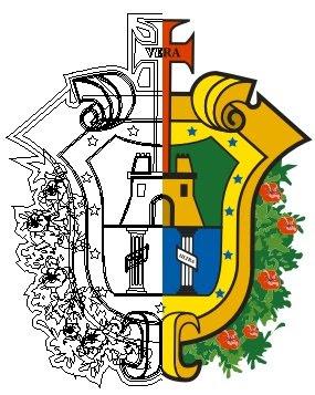 Foto del escudo de veracruz 48