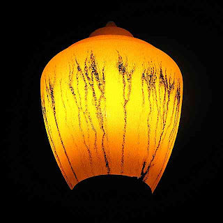 Plant growing inside a street light (c) David Ocker