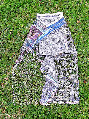 Newspaper on the grass after heavy rain (c) David Ocker