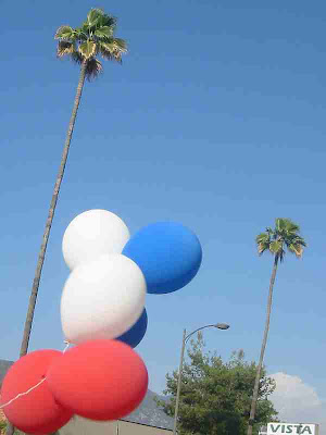 California Dreamin' - Balloons and Palms