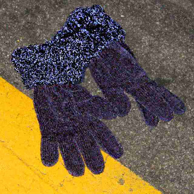 Gloves in the Wild (c) David Ocker