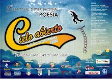 """afiche de """"cielo abierto II"""""""